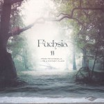 FUCHSIA - From Psychedelia To A Distant Place