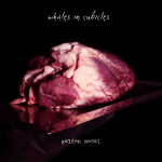 WHALES IN CUBICLES - Golden Medal