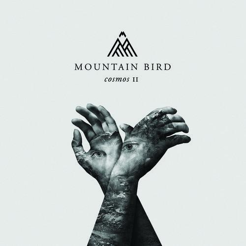 MOUNTAIN BIRD - Cosmos II