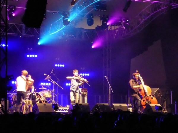 Shrewsbury Folk Festival 2014 (5)