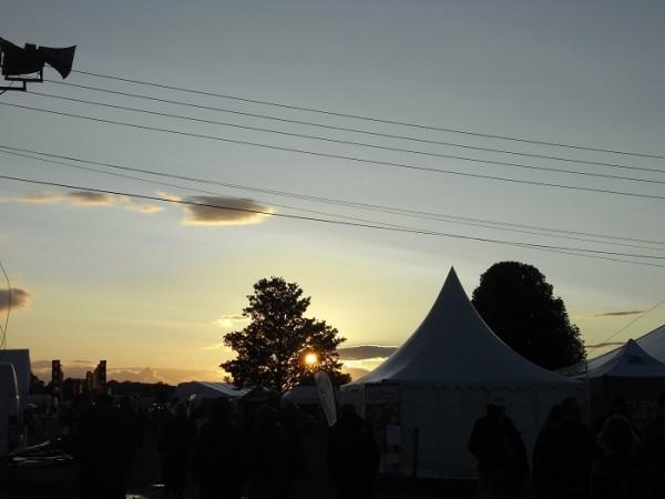 Shrewsbury Folk Festival 2014 - Live Review