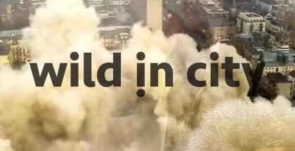Wisht-Hounds-Wild-in-City